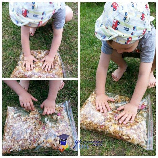 7 идей для цветочной прогулки с ребенком: сенсорный пакет