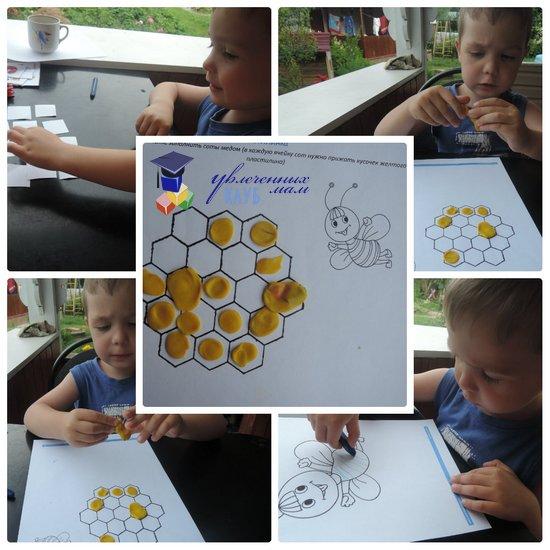 Пчелиные соты