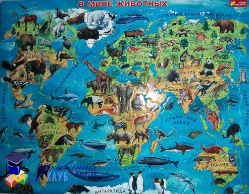 Как выбрать пазл: географическая карта
