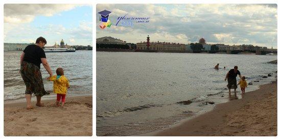 сценарий тематической прогулки пляж