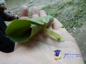улитка из листочков