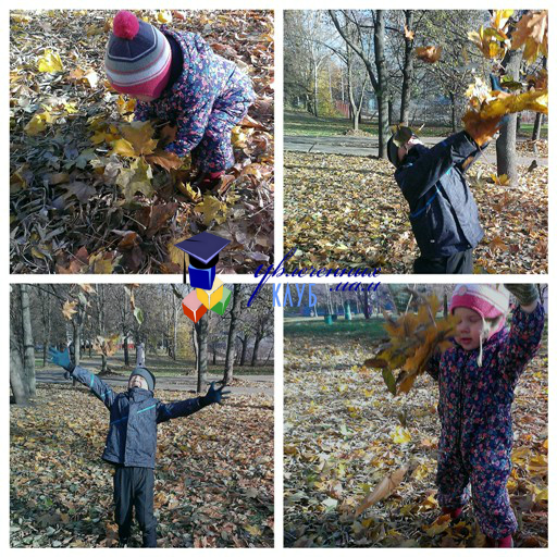 осенний квест: салют из осенних листьев