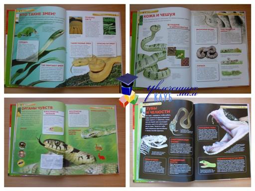 детская энциклопедия1