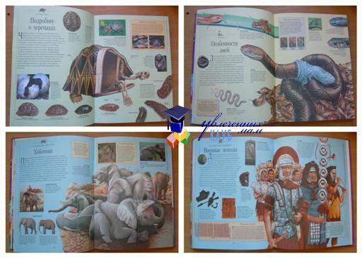 строение животных энциклопедия для детей