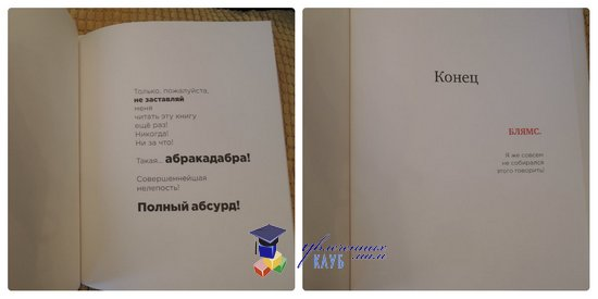 книга без картинок 3