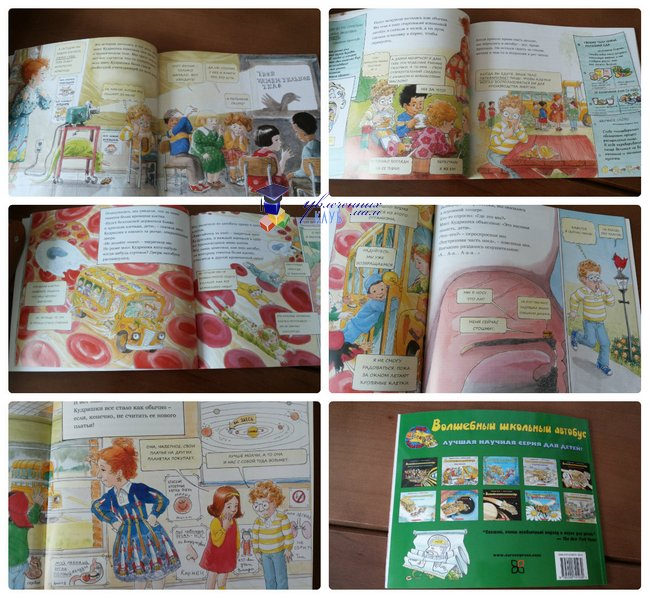 Познавательные книги для детей от 5 лет_Школьный автобус