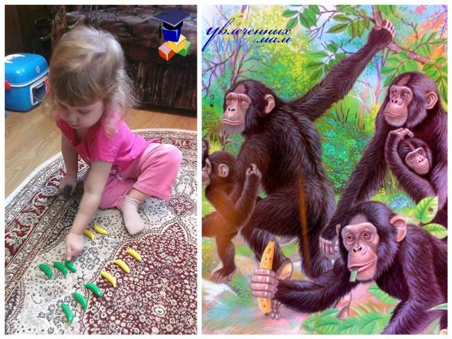 Встреча с обезьянами