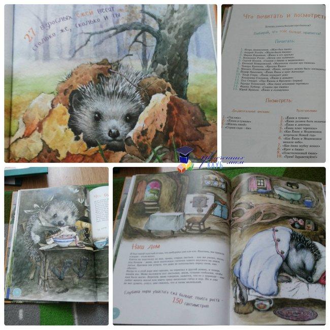 энциклопедии про животных_ я еж