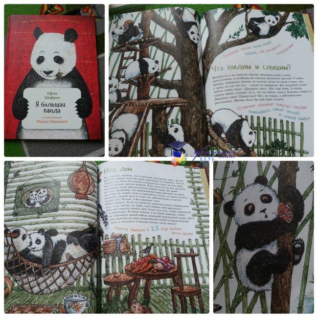 энциклопедии про животных_я большая панда
