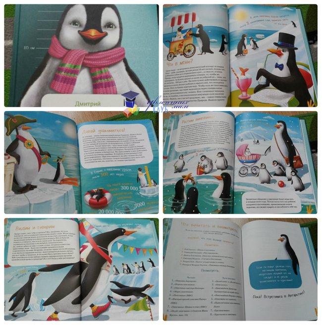 энциклопедии про животных_я пингвин