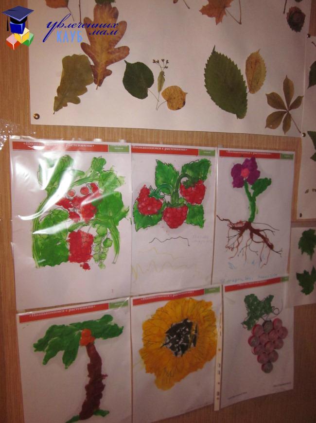 Выставка работ на тему Растения