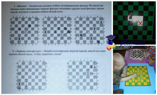 Закрепление знаний по шахматной фигуре - Конь