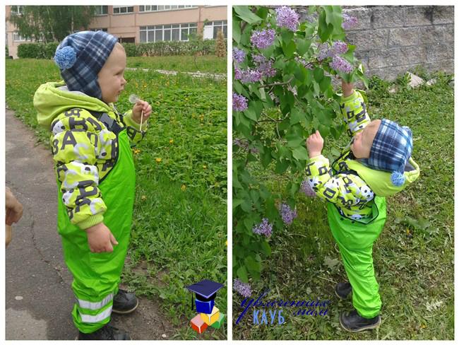 Изучаем цветы