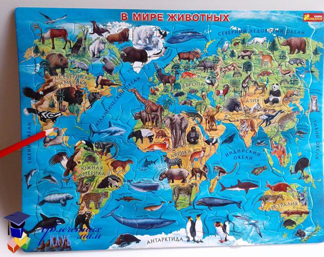 географический пазл