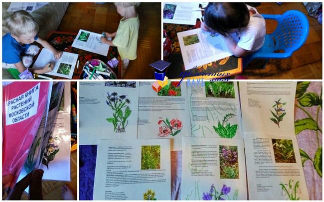 Красная книга растений Московской области