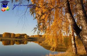 Физкультминутка Осень