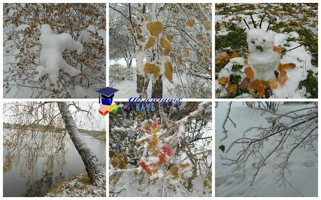 Осенний лес2
