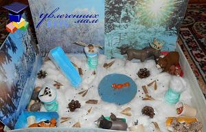 Игровая коробочка Зимний лес