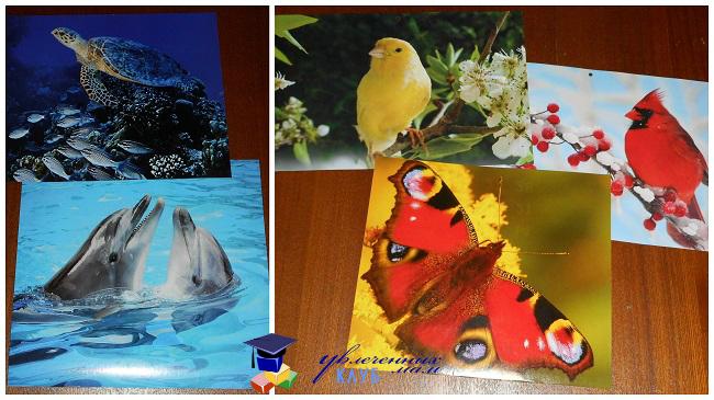 Картинки-плакаты2