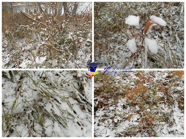 Земля под снегом