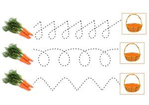Проводилки Морковь
