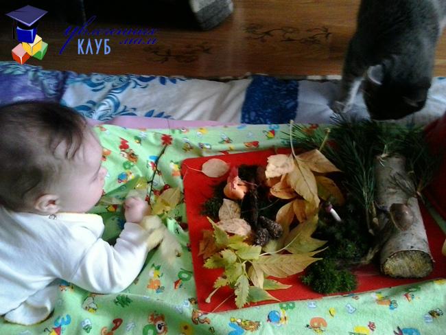 Осенняя сенсорная коробочка для малыша