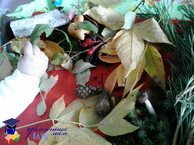 Осенние игры для малышей